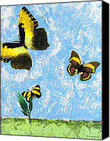 Insects Mixed Media Canvas Prints - Yellow Butterflies - Spring Art by Sharon Cummings Canvas Print by Sharon Cummings