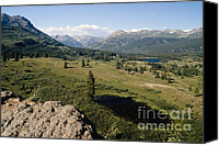 Southern Rocky Mountains Canvas Prints -  Alpine Meadow in Colorado Canvas Print by George Oze