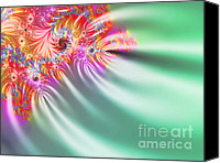 Fireworks Canvas Prints -  Aurora Color Dreams Canvas Print by Stefano Senise