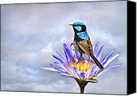 Wren Digital Art Canvas Prints -  Lily Blue Canvas Print by Trudi Simmonds