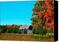 Fall Foliage Artwork Canvas Prints -  Old Barn In Fall Color Canvas Print by Robert Pearson