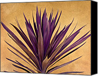 Orange Digital Art Canvas Prints -  Purple Giant Dracaena Santa Fe Canvas Print by John Hansen