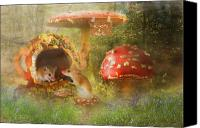 Mushroom Canvas Prints -  Room for Rent Canvas Print by Trudi Simmonds