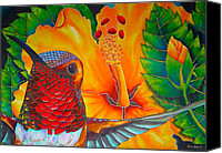 Silk Postcard Tapestries - Textiles Canvas Prints -  Rufous Hummingbird Canvas Print by Daniel Jean-Baptiste