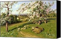 Four Season Landscapes Canvas Prints -  Spring - one of a set of the four seasons  Canvas Print by Arthur Walker Redgate