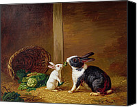 1842 Canvas Prints -  Two Rabbits Canvas Print by H Baert