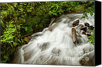 Wahkeena Creek Canvas Prints -   Wahkeena Creek Canvas Print by Idaho Scenic Images Linda Lantzy