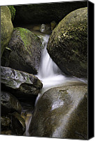 Arkansas Canvas Prints - 0706-0138 Smith Creek Rocks Canvas Print by Randy Forrester