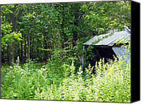 Log Cabins Framed Prints Canvas Prints - A Broken Down Farm Building Canvas Print by Robert Margetts