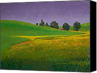 Barn Pastels Canvas Prints - A Sliver of Canola Canvas Print by David Patterson