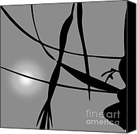 Silver Canvas Prints - Abstract Reflection Canvas Print by Dave Gordon