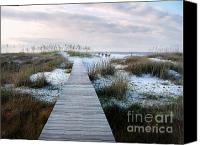 Panama City Beach Photo Canvas Prints - Across the Dunes Canvas Print by Julie Dant