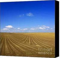 Ploughed Canvas Prints - Agricultural landscape Canvas Print by Bernard Jaubert