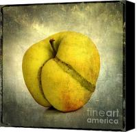 Foodstuff Canvas Prints - Apple textured Canvas Print by Bernard Jaubert