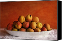 Bowl Canvas Prints - Apricot Delight Canvas Print by Priska Wettstein
