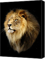 Lion Digital Art Canvas Prints - Aslan Canvas Print by Julie L Hoddinott