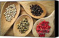 Peppers Canvas Prints - Assorted peppercorns Canvas Print by Elena Elisseeva