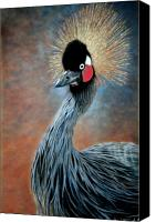 Family Room Canvas Prints - Attitude Bird Canvas Print by Carol McCarty