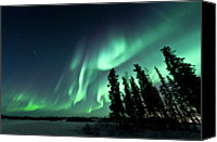 Frozen Canvas Prints - Aurora Borealis Canvas Print by Michael Ericsson