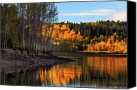 Aspen Trees Canvas Prints - Autumn in the Wasatch Mountains Canvas Print by Utah Images