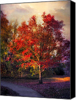 Maple Trees Digital Art Canvas Prints - Autumn Maple Canvas Print by Jessica Jenney