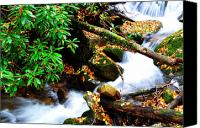 Rushing Mountain Stream Canvas Prints - Autumn Serenity Canvas Print by Thomas R Fletcher