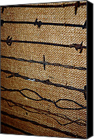 Barbed Wire Fences Canvas Prints - Barbed Wire Canvas Print by LeeAnn McLaneGoetz McLaneGoetzStudioLLCcom