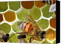Insects Mixed Media Canvas Prints - Bee Canvas Print by Chris Butler