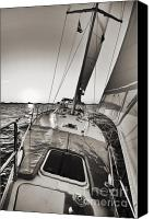 Beneteau Sailboat Canvas Prints - Beneteau 49 Sailing Yacht Close Hauled Charleston Sunset Sailboat Canvas Print by Dustin K Ryan