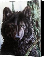 Wolf Canvas Prints - Black Wolf Canvas Print by Sandi Baker