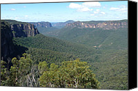 Kangaroo Canvas Prints - Blue Mountains Canvas Print by Carla Parris