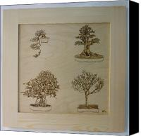 Wood Pyrography Canvas Prints - Bonsai Pyrographic Art Original Panel with Frame by Pigatopia Canvas Print by Shannon Ivins