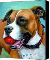 Dogs Canvas Prints - Boxer with Red Ball Canvas Print by Dottie Dracos