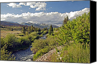 Mountain Stream Canvas Prints - Breckenridge Colorado Canvas Print by James Steele