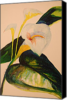 Canna Canvas Prints - Canna Lily Canvas Print by Lynn Beazley Blair