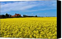 Manor Canvas Prints - Canola Castle Canvas Print by Gert Lavsen