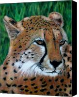 Family Room Canvas Prints - Cheetah Canvas Print by Carol McCarty