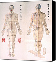 1950s Canvas Prints - Chinese Chart Of Acupuncture Points Canvas Print by Everett