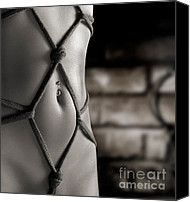 Voluptuous Canvas Prints - Closeup of a Stomach with Decorative Rope Bondage Shibari Canvas Print by Oleksiy Maksymenko