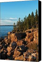 Acadia Canvas Prints - Coastal Maine landscape Canvas Print by John Greim