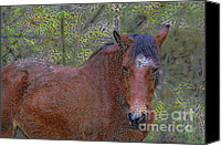 Animal Mixed Media Canvas Prints - Comfort Canvas Print by Deborah Benoit