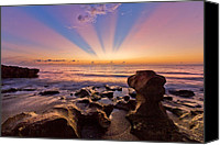 Tide Canvas Prints - Coral Cove Canvas Print by Debra and Dave Vanderlaan