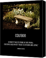 Stone Posters Canvas Prints - Courage  Canvas Print by Bonnie Bruno