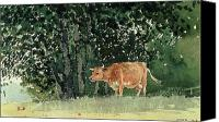 Signed Painting Canvas Prints - Cow in Pasture Canvas Print by Winslow Homer