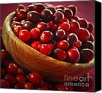 Berry Canvas Prints - Cranberries in a bowl Canvas Print by Elena Elisseeva