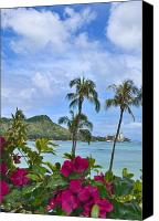 Waikiki Canvas Prints - Diamond Head And Waikiki Canvas Print by Tomas del Amo - Printscapes