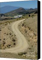Country Dirt Roads Canvas Prints - Dirt road winding Canvas Print by Sami Sarkis