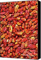 Salsa Canvas Prints - Dried Chili Peppers Canvas Print by Carlos Caetano