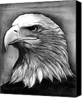 Eagle Drawings Canvas Prints - Eagle Canvas Print by Jerry Winick