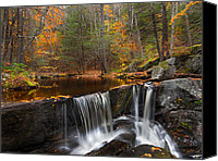 Maple Leafs Canvas Prints - Enders Falls Canvas Print by Bill  Wakeley